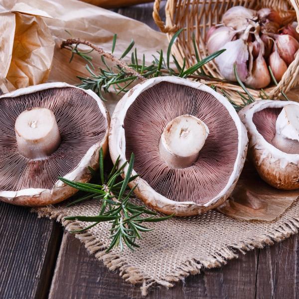 Mushroom Lentil Burger Recipe